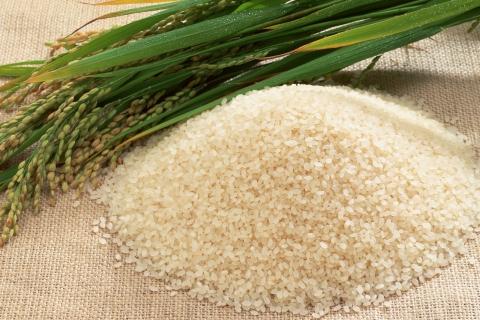Рисовая диета и приготовление продуктов для нее